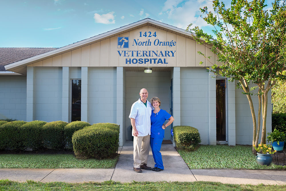 About our Apopka Veterinary Hospital