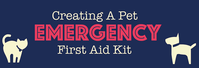 Create A Pet Emergency First Aid Kit